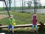 Mateřská škola - výlet vlakem 22.5.